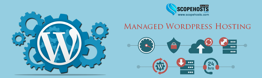 Know About Managed WordPress hosting, as well as it's pros and cons, so that you can decide for yourself whether it is something you will benefit from.