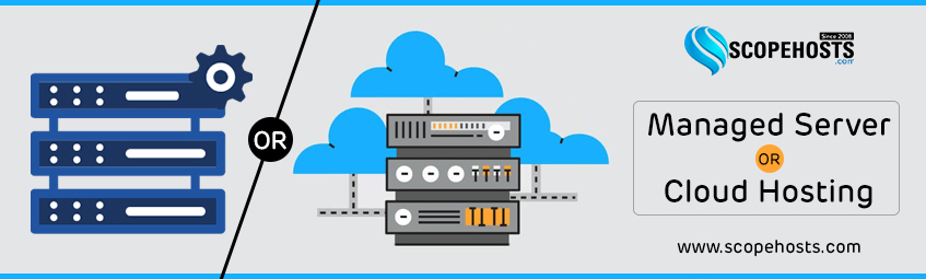 Either choose Cloud Hosting or Managed Servers to get your business website hosted efficiently.
